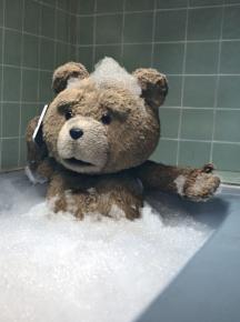 Ted, Seth MacFarlane